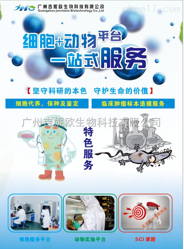 供应T-24/DDP耐药株 吉妮欧生物科技 耐药株筛选服务 细胞实验
