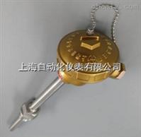 上海自动化仪表三厂WRN-621、WRN-621A、WRN2-621装配式热电偶
