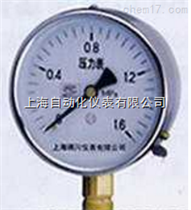 Y-103AZ不锈钢压力表