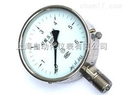 YTN-100ZK耐震压力表上海自动化仪表四厂
