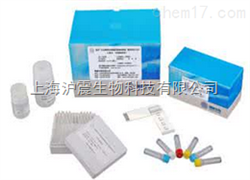 鸡痘病毒PCR检测试剂盒