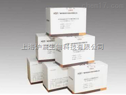 粘附性大肠杆菌(EAEC)核酸检测试剂盒(PCR-荧光探针法)