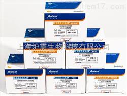 山羊痘(GPV)核酸检测试剂盒(PCR-荧光探针法)