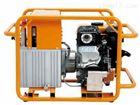PMG-700D汽油机复动式液压泵浦