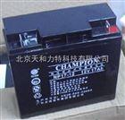 冠军蓄电池NP17-12