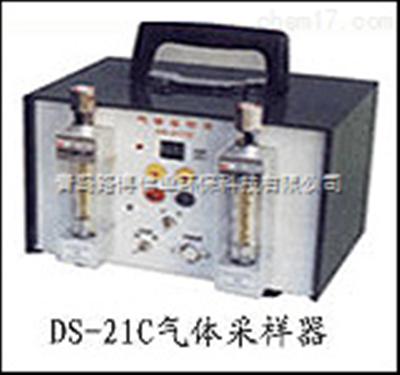 DS-21C建材行业检测环境 DS-21C型双气路大气采样器