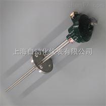 WZP2-331F防腐热电阻,上海自动化仪表三厂