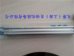 FESTO标准气缸DSBC-32-320-F-PA-N3
