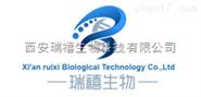 荧光标记葡聚糖,CY3-Dextran(红色粉末)