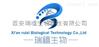 FITC荧光标记重组蛋白G  技术说明 科研实验 价格