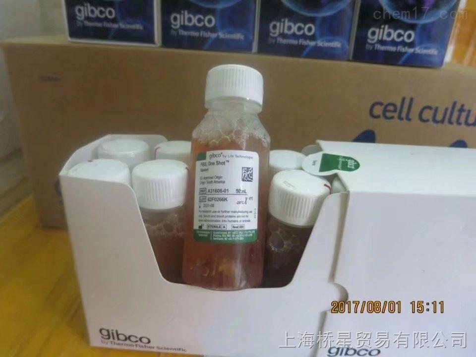 GIBCO南美胎牛血清A31608-02 10x50mL