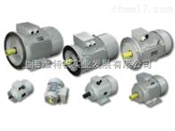 特价供应AVL油泵MV0209SP