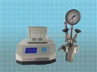 YZPR-250(M)250ml Micro-reactor磁耦搅拌反应釜