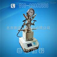 YZQR-250(M)250ML QuickLAB快开机械搅拌反应釜