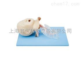 高级儿童气管插管模型|气管插管模型