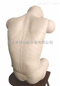 高级综合穿刺术技能训练模拟人(前倾坐位)|临床诊断实训模型