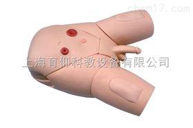 男性导尿示教模型|护理训练模型