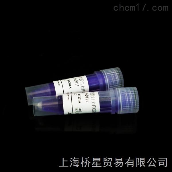 非还原型蛋白上样缓冲液,5×,1ml×2海利克思科研试剂