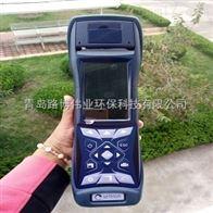 斯尔顿便携式六组分烟气分析仪选择C600型号