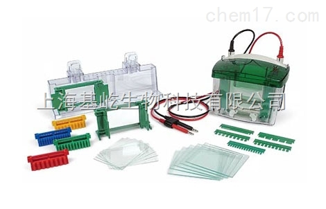 Biorad Mini-PROTEAN® Tetra 电泳槽