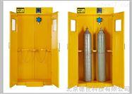 氣瓶柜(單瓶/雙瓶/三瓶)