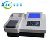 XCPN-401北京多参数水质分析仪