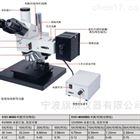 Insize顯微鏡ISM-DLC120