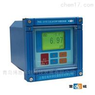 SJG-208上海雷磁SJG-208型污水溶解氧监测仪