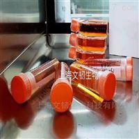 PC-12高分化PC-12大鼠肾上腺嗜铬瘤细胞通过(str)