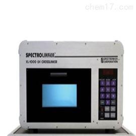 XL-1000美国SP紫外交联仪
