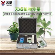 YT-YC叶绿素测定仪价格