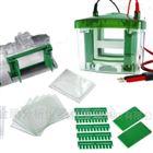 bio-rad 垂直高压电泳系统套装 授权代理