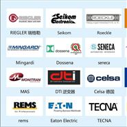 ACE减震器GS-70-700-EE-13000N-K2608
