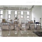 DYG141工业有机废水处理成套实验装置(自动控制)