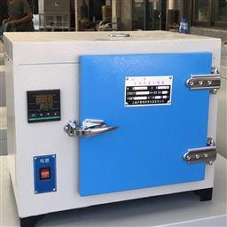 101A-2B食品恒温灭菌鼓风干燥箱(300℃医疗消毒)