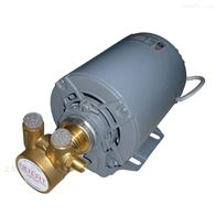 PR增压泵电感式单相减震低噪音旋转叶片泵
