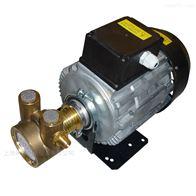单相550WPR进口减震高压旋转叶片泵反渗透增压泵
