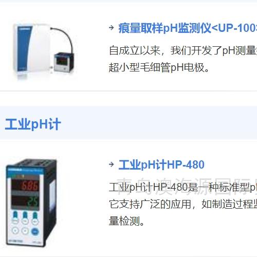 Horiba倔场直插式激光氯化氢测量仪TX-100