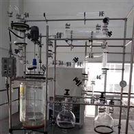 R-100L双层玻璃反应釜100L