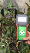 LJSD-3土壤紧实度测定仪价格