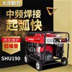 小型便携式190A汽油发电电焊一体机