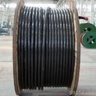 耐高温DJFPFP22双屏蔽防腐电缆生产厂家