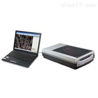 QNZ-A全能型植物图像分析仪