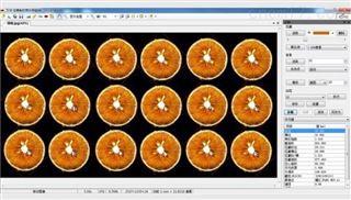 GQM-A瓜果剖切面、瓤色图像分析仪