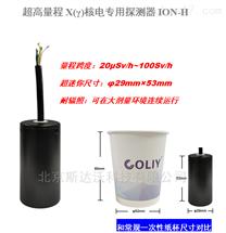 ION-H超高量程X(γ)核电专用探测器ION-H核辐射