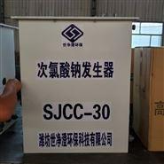 福建漳州一体式次氯酸钠发生器