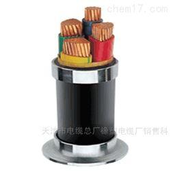 MVV32矿用铠装电力电缆 3*25+1*16