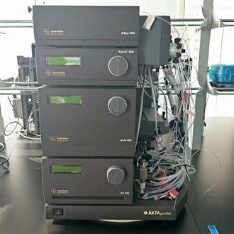 Purifier 100GE AKTA Purifier二手蛋白纯化仪,层析系统