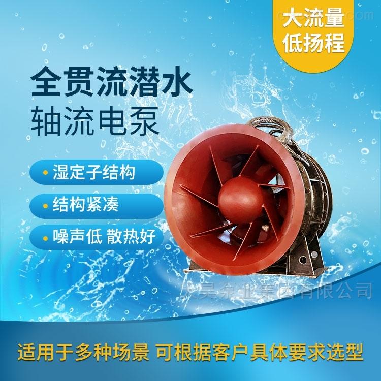 一体化泵闸用全贯流潜水闸门泵