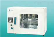 上海精宏 DHG-9023A台式电热恒温鼓风干燥箱